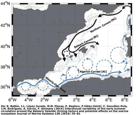 corrientes marinas del Mediterraneo